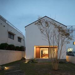 建築/住まい/シンプル住宅/建築デザイン/注文住宅 外観夜景 OUCHI-43  庭に開いた…(1枚目)