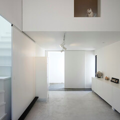 建築/住まい/建築家と作る家/シンプル住宅/OUCHI-40/猫と住む家/... 猫室から猫が見下ろしてます。  お引越後…(1枚目)