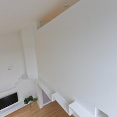 建築/住まい/建築デザイン/猫と住む家/猫と暮らす家 キャットウォークと小さなトンネル ハコノ…