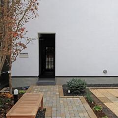 建築/住まい/建築デザイン/シンプル住宅/注文住宅 玄関前に自前のポケットパーク OUCHI…