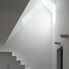 建築/住まい/天窓/OUCHI-40/キャットウオーク/建築家と作る家/... 「光」という自然を取り入れる  建築家は…