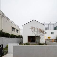 建築/住まい/シンプル住宅/ミニマルデザイン 三角屋根のOUCHI-43 シンプルな低…