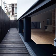 建築/住まい/建築デザイン/シンプル住宅/注文住宅 1階リビング窓外 塀の外は公道 OUCH…
