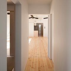 建築/住まい/玄関/建築家と作る家/注文住宅/OUCHI-41/... 玄関横の隠れ家のような入り口  平屋デザ…