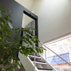 建築/住まい/リビング階段/シンプル住宅 入居後の階段のようす。