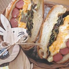 サンドイッチ/わんぱくサンド/ベーグルサンド/ベーグル/パン/LIMIAごはんクラブ/... 大好きなパン屋さんのベーグルで ベーグル…
