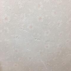 落書き/ポールペン消し/壁紙 壁紙の落書き消しなら、ガンジーのポールペ…(4枚目)