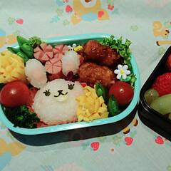 みんなのお弁当 幼稚園の遠足弁当。 娘からの「ウサギのお…