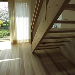 野川/自然素材/漆喰/木/和み/木漏れ日 居間への引き戸をあけると外の緑がみえます…