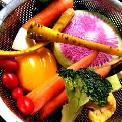 野菜/ピクルス/自家製/フォロー大歓迎/わたしのごはん/おうちごはんクラブ/... #わたしの手作り  ピクルスを漬けました…