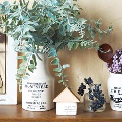 陶器ビン/コーギー/フェイクグリーン/おうち型/ハンドメイド/DIY/... おうち型のオブジェを作りました😊