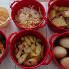 ボヌール/手作り惣菜/おうちごはんクラブ/おうちごはん/グルメ/フード/... 時間がある時に常備菜を作っておきます。そ…