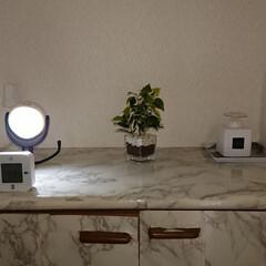 ムサシ RITEX LEDどこでもセンサーライト ASL-090(その他屋外照明)を使ったクチコミ「我が家の玄関も随分シンプルになりました😁…」