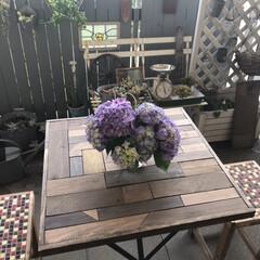 アメリカンキッチンスケール  100-061 | DULTON(クッキングスケール)を使ったクチコミ「お友達の庭に咲いた紫陽花を分けてもらいま…」(1枚目)