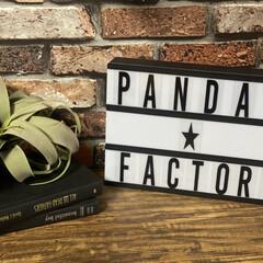 洋書/キセログラフィカ/Awesome Store/インテリア/ig-panda.factory/雑貨 みなさまこんにちわ🐼🐾です! ずっと欲し…