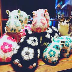 かぎ針/編み物/アフリカンフラワーモチーフ/ハンドメイド/panda@factory/手芸/... アフリカンフラワーをくっつけてカバさん♥…