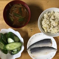 お昼ご飯/栗ごはん/栗/グルメ 家の庭になった栗🌰で栗ごはんに⤴︎ ⤴︎…