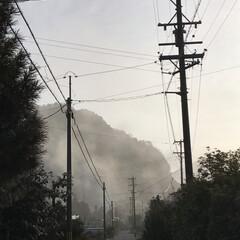 霧が/LIMIAおでかけ部/風景 今朝の風景   霧が凄かったよ(1枚目)