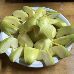 うさぎりんご/林檎/うさぎ/おうち/クリスマス/スイーツ 息子がりんごを切ってくれたよ    うさ…