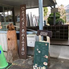 教室/ブランコ/ブルーベリーシェイク/ケーキ/桜/廃校/... 従妹が廃校でやってるカフェに行かない?っ…