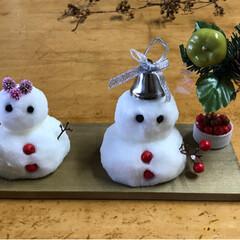 板/混ぜるだけ/オシロイバナの種/塩/雪だるまを作ろう/フォロー大歓迎/... お庭やお家にあるもので雪だるまを🎶   …