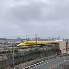 ドクターイエロー/幸せの黄色い新幹線/黄色い/新幹線/雨季ウキフォト投稿キャンペーン/フォロー大歓迎/... ドクターイエロー   始めて見れました。…(2枚目)