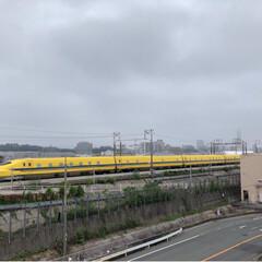 ドクターイエロー/幸せの黄色い新幹線/黄色い/新幹線/雨季ウキフォト投稿キャンペーン/フォロー大歓迎/... ドクターイエロー   始めて見れました。…