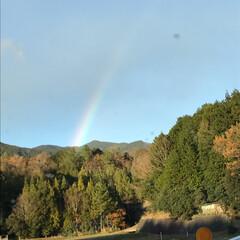 虹/風景 ただいま仕事帰り中ですが、虹が出てたから…