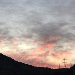 夕日/フォロー大歓迎/冬/おでかけ/風景 高速道路からみえる貯水池が気になってたか…