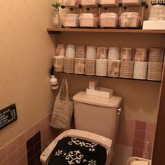 しまむら購入品/トイレットペーパーカバー/折り紙/キャンドゥ/インテリア/トイレ/... うちのトイレです    まだまだ発展途上…