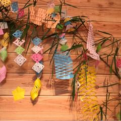 切り紙/折り紙/壁/笹/織姫と彦星/七夕/... 七夕飾り   飾り付け出来ました   ☆…(3枚目)
