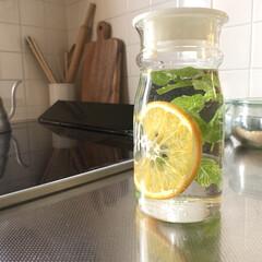 ウォーター/爽やか/蜂蜜漬け/はちみつ漬け/ミントウォーター/ミントティー/... ミントとオレンジでミントウォーターを作り…