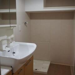 エコカラット/キッチンパネル/床段差 洗面室は機器類は既存を活かし 浴室との床…