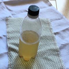 酵母/自家製酵母/ラッピング/ハンドメイド/夏レシピ/フード/... 自家製酵母を500mlペットボトルに分け…