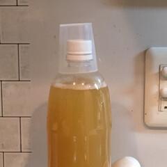 グルメ/フード/キッチン/夏ドリンク/自家製酵母/自家発酵/... はちみつジンジャーエール発酵中。泡がぐん…