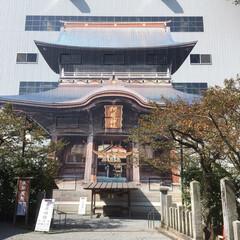 ドライブ/くまモン/地震/阿蘇 基本☺️ハンドメイドか 植物のみ 投稿と…(3枚目)