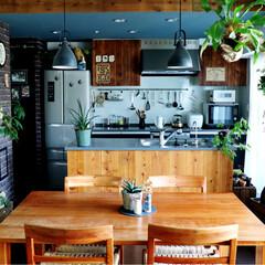 観葉植物/足場板/キッチンDIY/キッチン/グリーン/DIY/... 今日のキッチン♫
