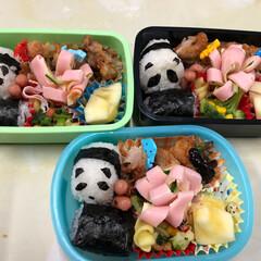 パンダおにぎり/お弁当/幼稚園児お弁当 幼稚園児3名お弁当。俵形おにぎりをパンダ…