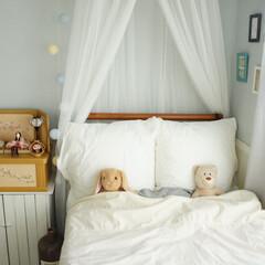 IKEA/ベッド/天蓋/子供部屋/ひなまつり/お雛様 娘の部屋に🎎を飾りました。