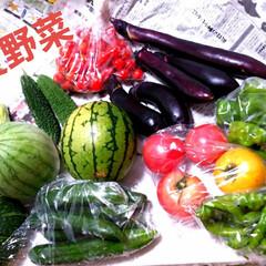 夏野菜 お義父さんから届きました✨ 夏野菜🌽🍅🍆…