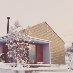 T's lab一級建築士事務所/和泉町の家 雪化粧