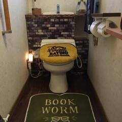 トイレ ずっとしたかったタンクレス。ホームセンタ…