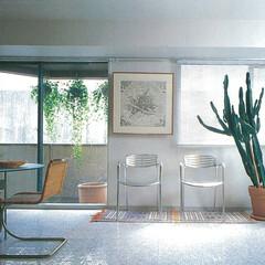メゾネットマンション/改装/スケルトンインフィル/玄関ホール/大理石モザイク床 自宅マンション改修いつでもご案内可能です
