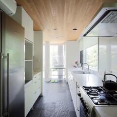 キッチン/オリジナルキッチン/庭の見えるキッチン 成城の家 ミッドセンチュリーテイストのお…(1枚目)