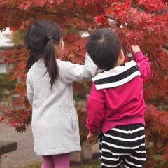 おでかけ/紅葉/フォロー大歓迎/秋/風景/旅/... 今日は紅葉を見に香嵐渓に行ってきました🍁…