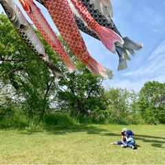 オーバーオール/リンクコーデ/こいのぼり/春のフォト投稿キャンペーン/ありがとう平成/令和の一枚/... 今日はいいお天気だったので 近所の河川敷…(2枚目)