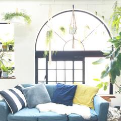 ソファ/モモナチュラル/クッションカバー/無印良品/グリーンのある暮らし/植物のある暮らし/... お気に入りのアーチ窓の前には 植物をたく…