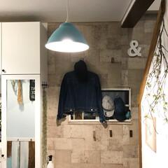 玄関/玄関収納/玄関インテリア/コンクリート風壁紙/壁紙/グリーン/... 我が家の玄関(^-^)  コンクリ風の壁…