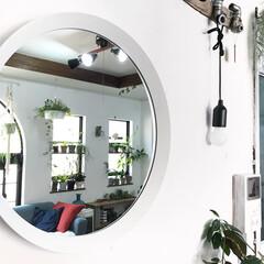 グリーンのある暮らし/IKEA/丸鏡/鏡/インテリア/DIY/... IKEAの丸鏡を壁に取り付けました(^^…