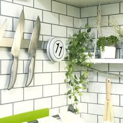 マグネット収納/包丁収納/キッチンインテリア/キッチン/包丁/DIY/... キッチンの写真(^^) 包丁はIKEAの…